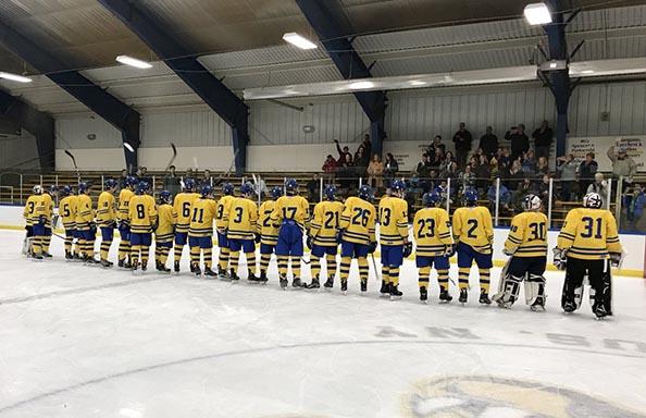 Hockey Team Lining Up