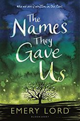 Summer Reading The Names they Gave Us Book Cover